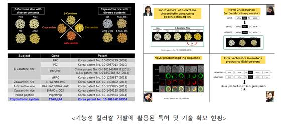 기능성 컬러쌀 개발에 활용된 특허 및 기술 확보 현황
