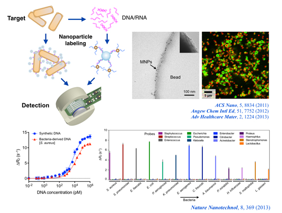 Nanoscale sensing technologies for in vitro diagnostics