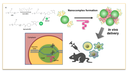 Nano-therapeutics to overcome resistance in cancer