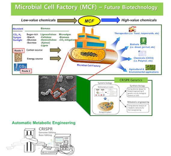 future biotechnology