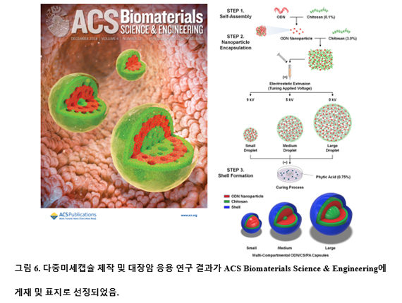 ACS Biomaterials Science & Engineering 게재 및 표지 선정