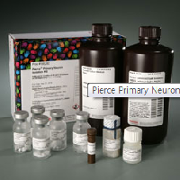 Pierce Primary Neuron Isolation Kit
