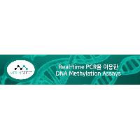 Real-time PCR을 이용한 DNA Methylation Assays