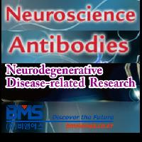 Neuroscience ��� / ��Ը��� ��� Antibodies
