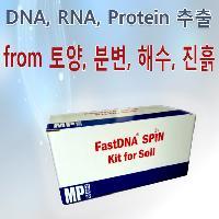 �к�(Feces)���� DNA ����_Ưȭ�� Bead �ļ��