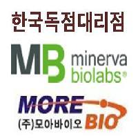 [Minerva] Mycoplasma detection kit