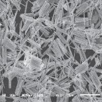 Nano Wire<������ũ>