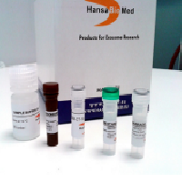 [�ﺸ�޵�Į]Ready to use kit for exosomal marker identificatio