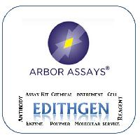 (Arbor Assays) 2'-3'-Cyclic GAMP Elisa Kit