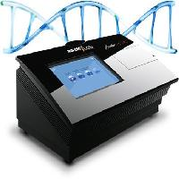 [셀덤]REAL-TIME PCR SYSTEM