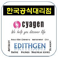 (Cyagen 한국공식대리점) Mesenchymal Stem with GFP !