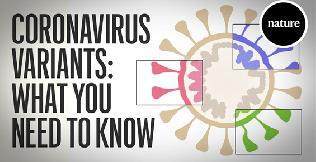 [바이오토픽] 동영상으로 보는, 코로나바이러스 변이주 기초상식
