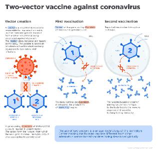 COVID-19 백신의 긍정적 결과가 담긴 보도자료의 홍수에 가세하여, 러시아의 「스푸트니크 V」 백신 개발자들은 11월 24일
