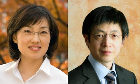 원하는 마이크로 RNA 제거 새 기법 개발...IBS RNA연구단·서울대 김진수 교수팀 연구 결과