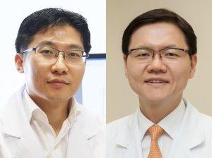위암 성장 억제하는 세포 내 핵수용체 발견