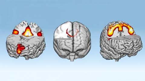 명상이나 기도, 강력한 자기 암시 등이 실제로 정신 영역에 영향을 미친다는 사실이 과학적으로 입증됐다. 뉴로피드백을 이용해 뇌를 1시간 이내로 훈련시킨 결...