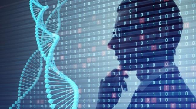 DNA 손상되면 출동하는 단백질 확인