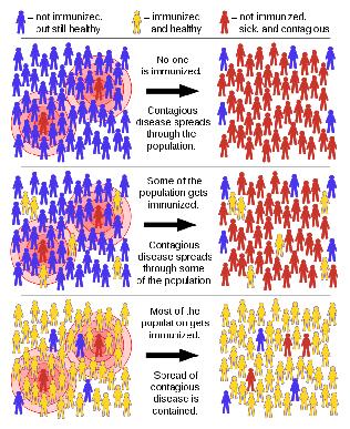 [바이오토픽] 긴급 점검: 집단면역(herd immunity), 올...