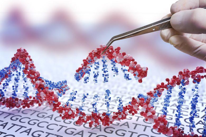 3세대 유전자 편집기술인 `CRISPR 기술`은 보다 빠르고 저렴한 신약 개발에 도움을 줄 수 있다. 또한 이 기술을 통해 맞춤화된 신약 개발...