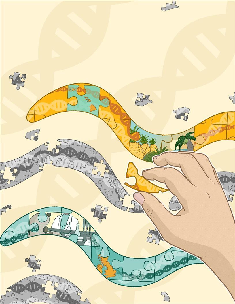다윈 진화의 유전적 원리, 하와이 꼬마선충에서 찾다
