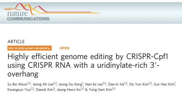 차세대 유전자교정 기술인 CRISPR-Cpf1 시스템의 효율을 높이는 방안이 제시됐다. 표적유전자와 결합하는 가이드 RNA의 말단에 유리디닐레...