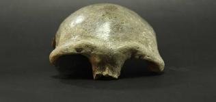 3만4000년 전 동아시아인은 코스모폴리탄