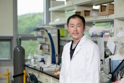 노화세포 제거 생체 재생물질 개발