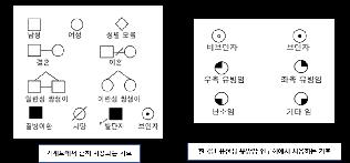 [친절한 유전상담 이야기]  상담 과정