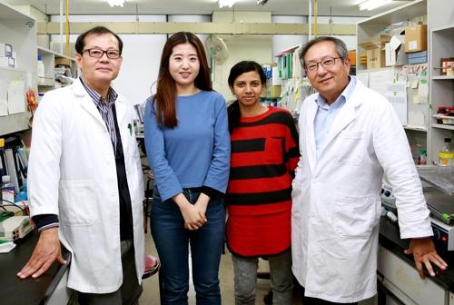 암을 억제한다…울산대 연구팀, 새 항암 면역치료 경로 발견