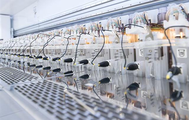 유전자 가위는 특정 유전자에만 결합하는 효소를 이용해 특정 DNA 부위를 자르는 유전체 교정 기술이다. 돌연변이 유전자를 잘라 유전질환을 치료하는