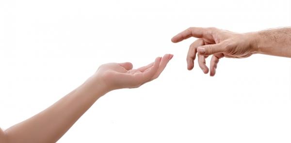 '손 이용하는 능력' 기원 밝혀줄 단서 발견