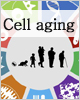Cell Aging Ű���� �м� (2009�� ~ 2013��)