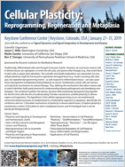 2019 Keystone Symposia - Cellular Plasticity: Reprogramming, Regeneration and Metaplasia & Signal Dynamics and Signal Integration in Development and Disease (joint meeting) 참석 후기