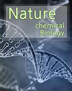 표적 단백질 분해 치료법의 개발