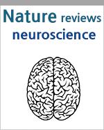 m6A 후성전사체: 뇌 발달과 기능에 기반한 전사체 가소성