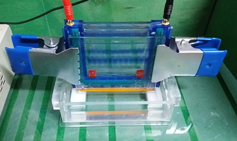 Easy Standard™ Vertical Electrophoresis System with Built-in Caster