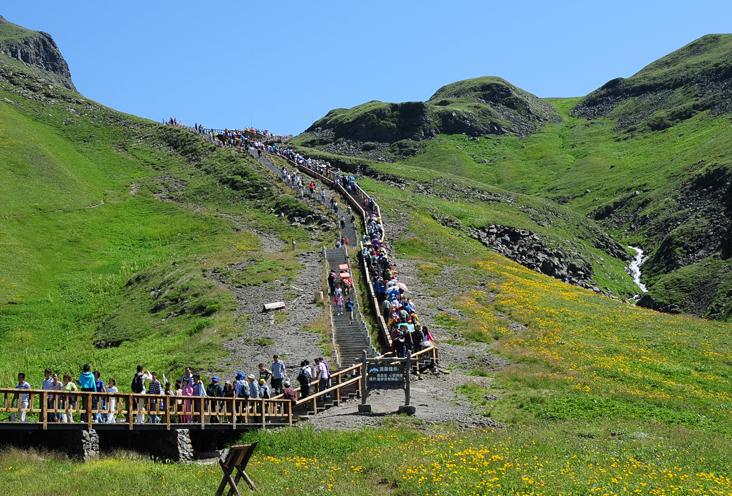 서백두를 오르는 계단 주변에 핀 껄껄이풀 군락