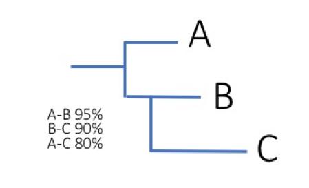 아주 간단하게 그린 유전자 차이에 따른 유연관계 정리