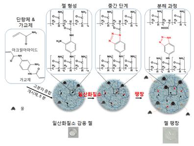 일산화질소에 선택적 반응하는 하이드로젤의 화학구조 및 개략도