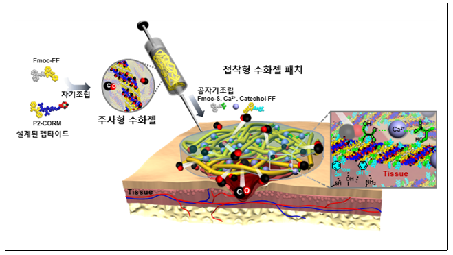 일산화탄소 방출 제어 가능한 주사형 및 접착형 수화젤 패치 치료제 제조법