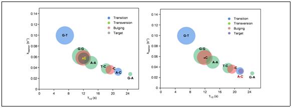 바이오 융합 금 나노입자를 이용한 암세포 유전자의 초고속 진단기술 개발