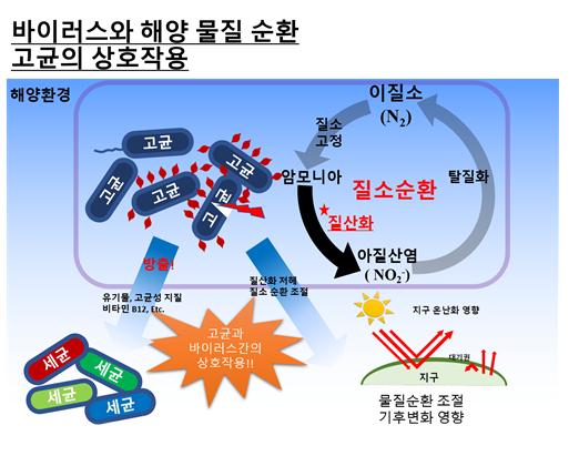 해양 고세균 감염 바이러스 발견