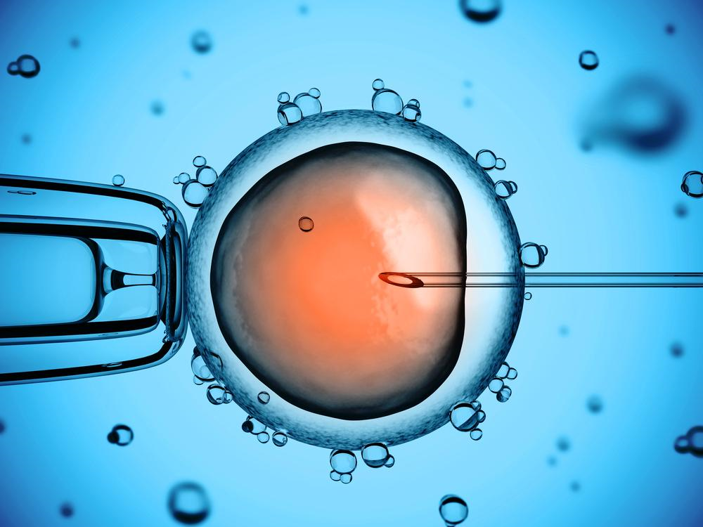 Editing of human embryos is controversial