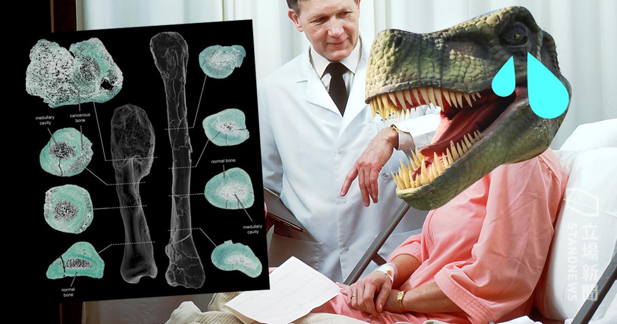 공룡도 암에 걸렸었다