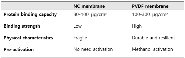 Membrane types for Western blot