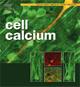 Cell Calcium. 2008 Jun;43