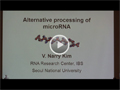 IUBMB Lecture - MicroRNA Regulation