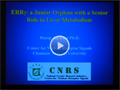 [Life Science Award Lecture] Orphan Nuclear Receptors and Liver Metabolism