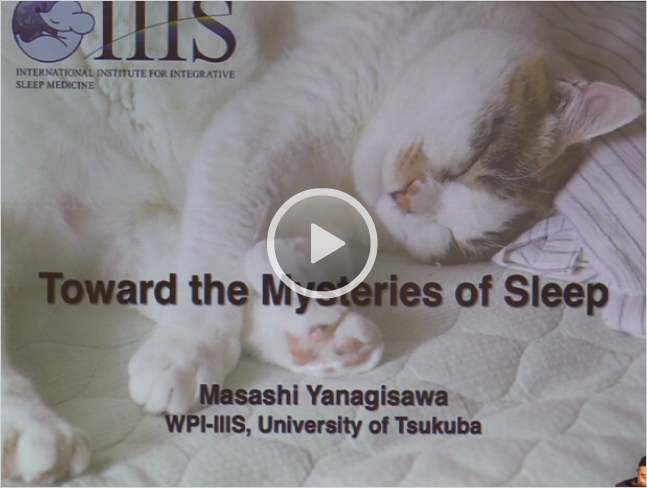 [Plenary Lecture Ⅱ] Toward the Mysteries of Sleep