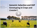 Genomic Selection and SNP Genotyping in Crops and Livestock